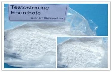 Testosterone Enanthate Muscle Building Steroids Molecular Formula C26H40O3 Assay 98% min
